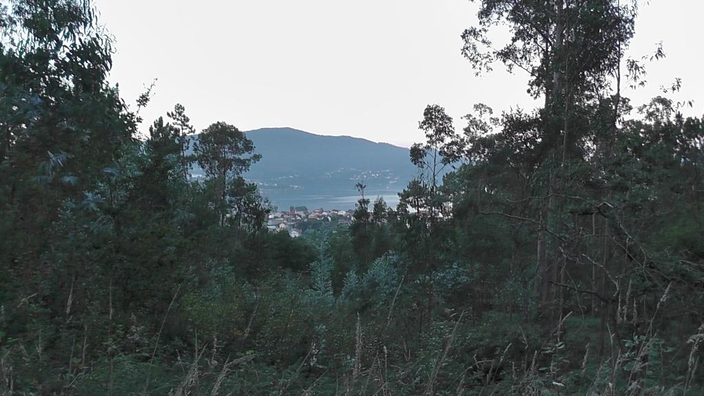 Uitzicht op de bocht van Vigo