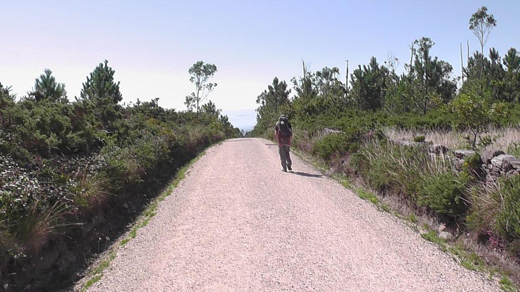 afdalen over een mooi breed pad
